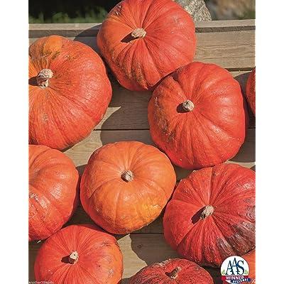 Cinderella's Carriage F1 Pumpkin 15 Seed Aas Winner 25-35 Lbs Have 5-7 Per Plant : Garden & Outdoor