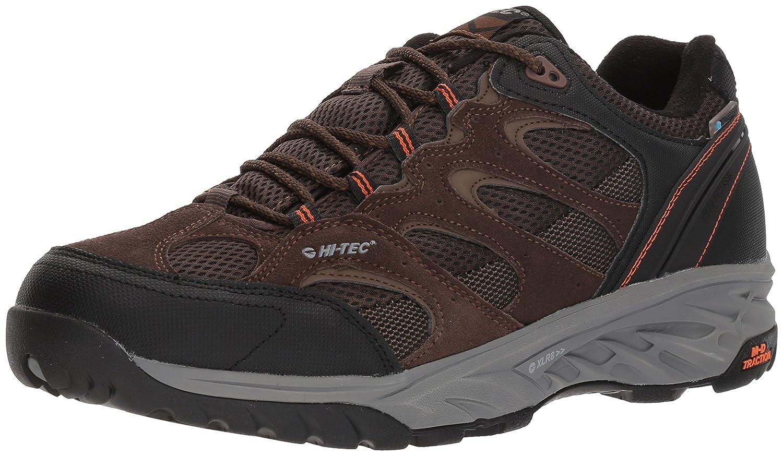 da48dc2bb5e7be Amazon.com | Hi-Tec Men's V-lite Wild-fire Low I Waterproof Hiking Shoe | Hiking  Boots