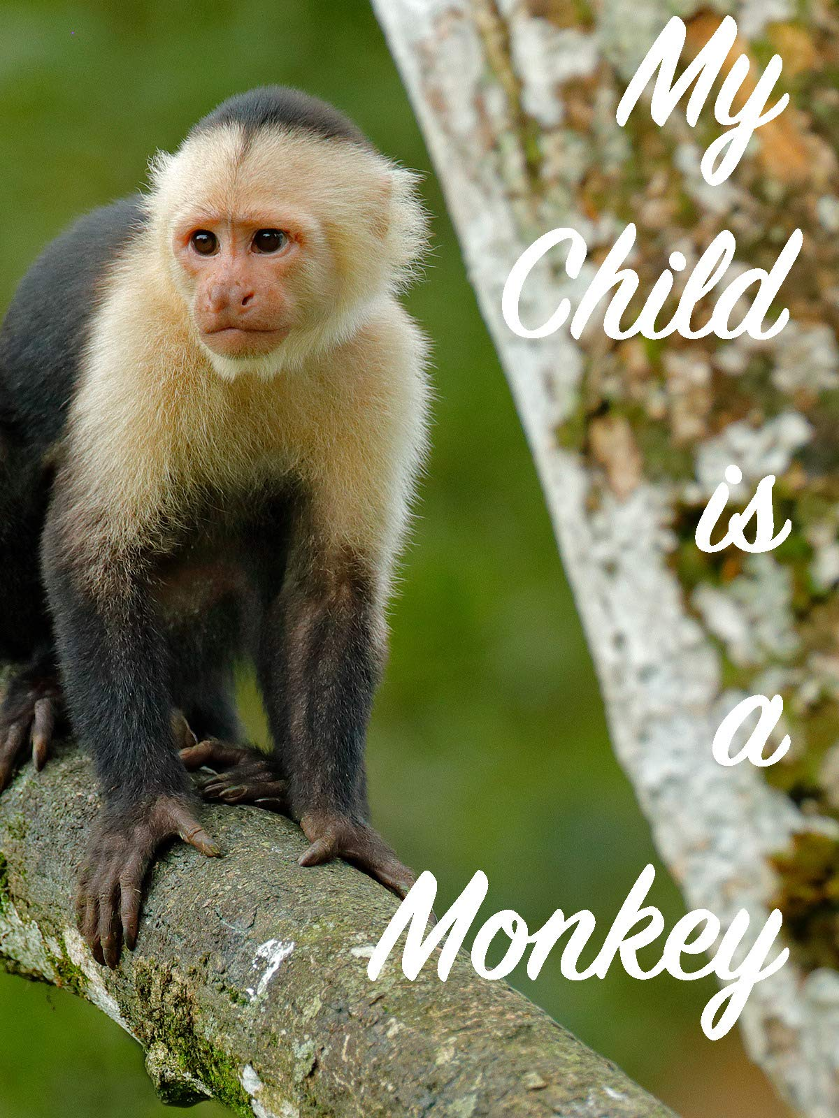 My Child's is a Monkey on Amazon Prime Video UK