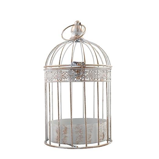 PrimoLiving Metal pájaro Jaula de p 530 Color Blanco Antiguo en ...