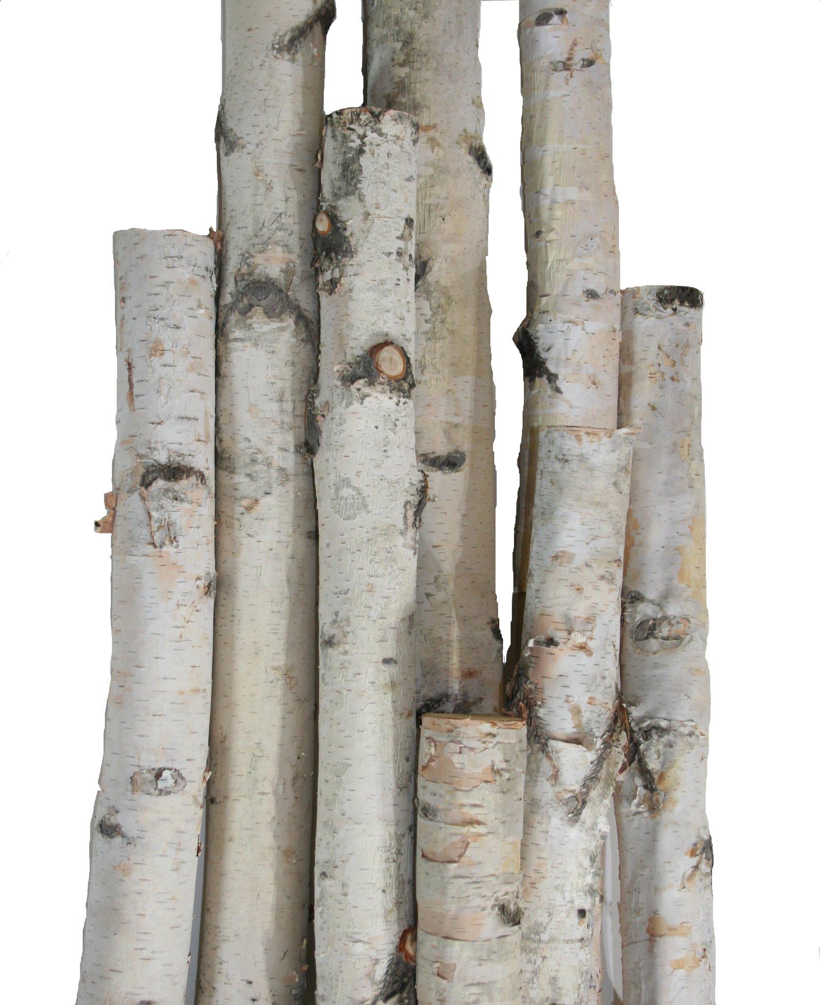 Wilson Enterprises White Birch Pole Packs, Natural, Kiln Dried White Birch Poles (Small- 3, 4, 5 ft Long x 1.5-2.5 inch Diameter) by Wilson Enterprises