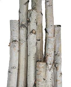 Wilson Enterprises White Birch Pole Packs, Natural, Kiln Dried White Birch Poles (Small- 3, 4, 5 ft Long x 1.5-2.5 inch Diameter)