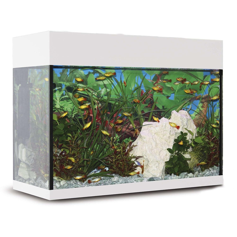 ICA KXI25B Kit Aqualux con Filtro Interior, Crema: Amazon.es ...