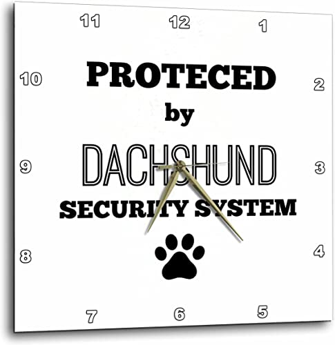 3dRose Protected by Dachshund Security System-Wall Clock, 13-inch DPP_221803_2