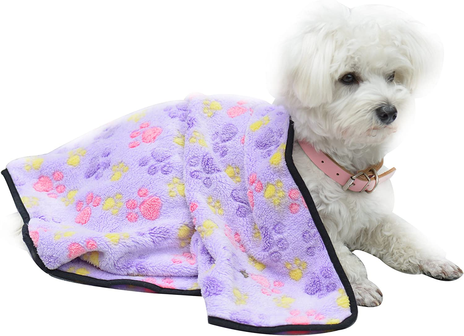 EXPAWLORER Pet Thick Blanket - Super Soft Premium Plush Blanket for Small Cats & Dogs: Home & Kitchen