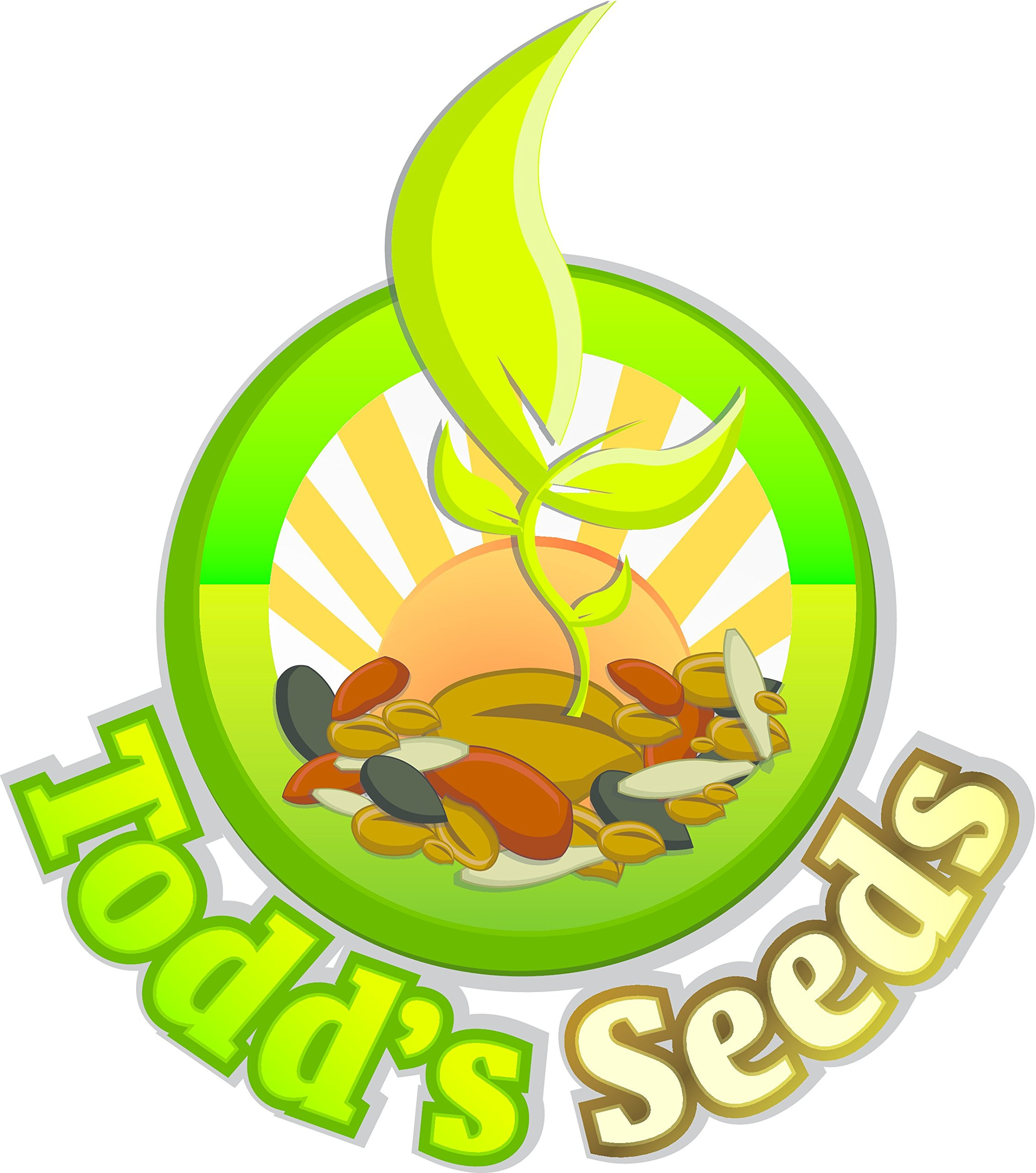 Sprouting Broccoli Seeds, One Pound - Todd's Seeds by Todd's Seeds