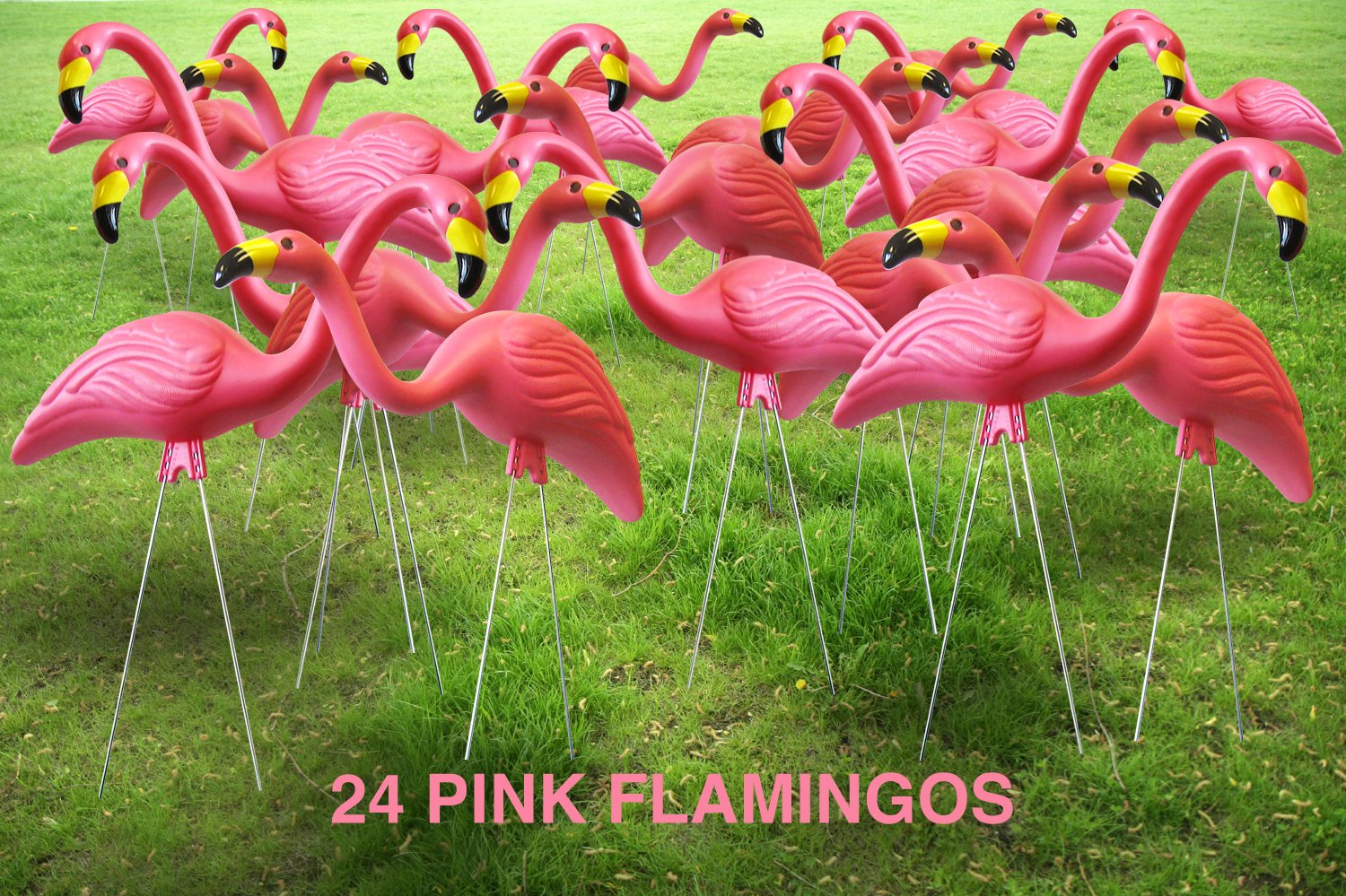 Flamingo garden ornament - Amazon Com Garden Plast Pink Flamingos 10 Pack Outdoor Statues Patio Lawn Garden
