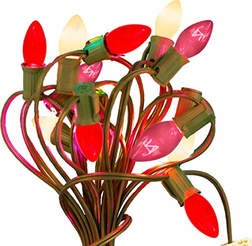 EST. LEE DISPLAY L D 1902 Valentine s Day Christmas Light Sets with Patio String Cord Included 25FT – 25 Light Bulbs Included Red, White, Pink Colors C7, Green Cord