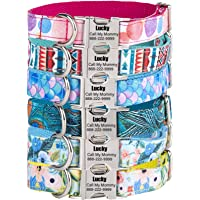 Dog Collar Personalized, Custom Engraved ID Collars with Name Phone Number Address for Pet(XS, S, M, L, XL)