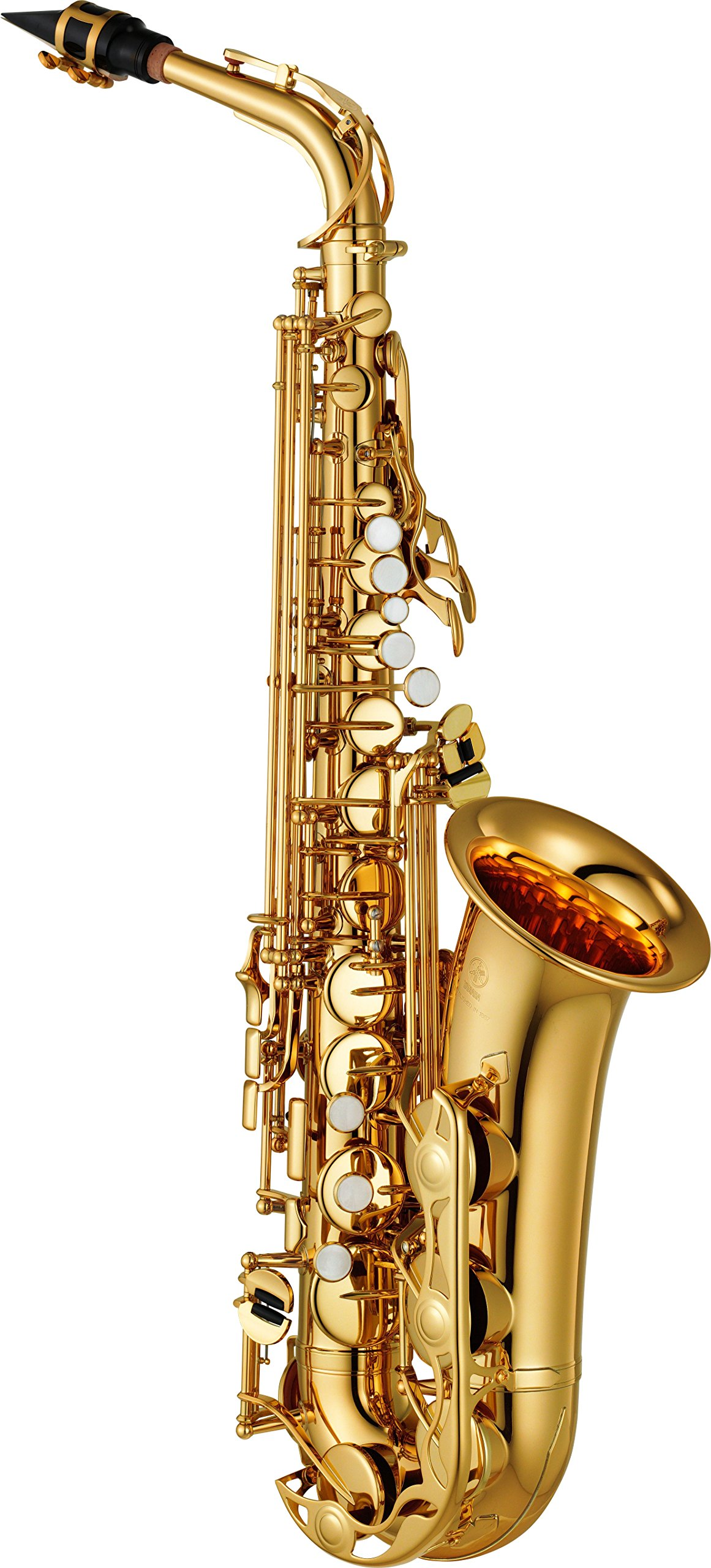 Best Beginner Saxophone