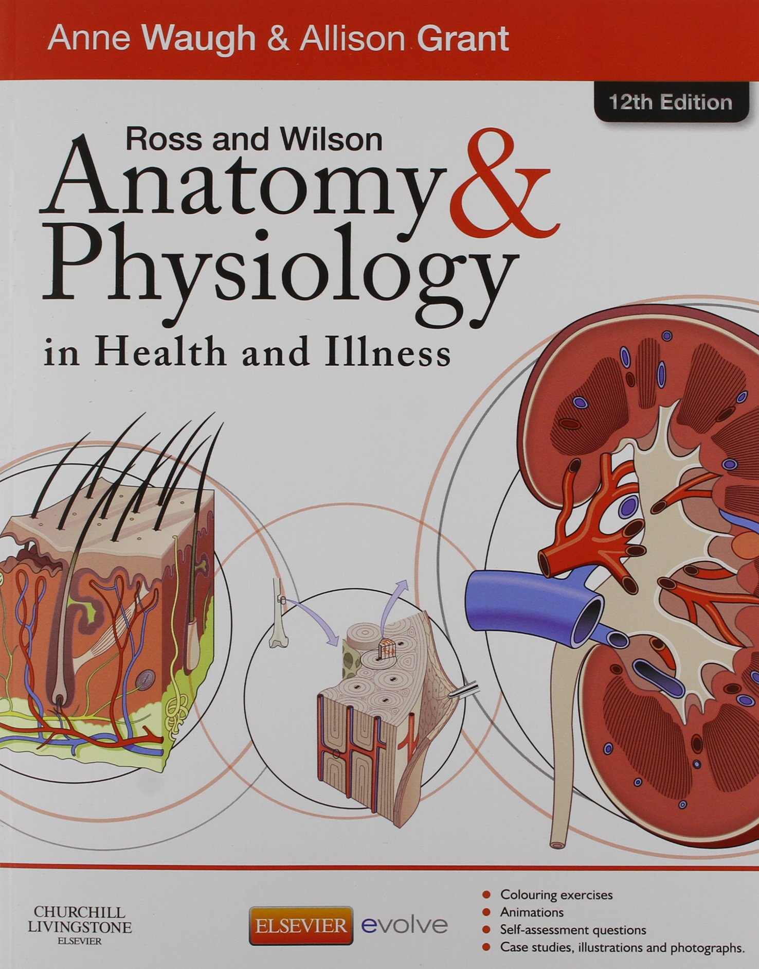 Buy Ross & Wilson Anatomy and Physiology in Health and Illness ...