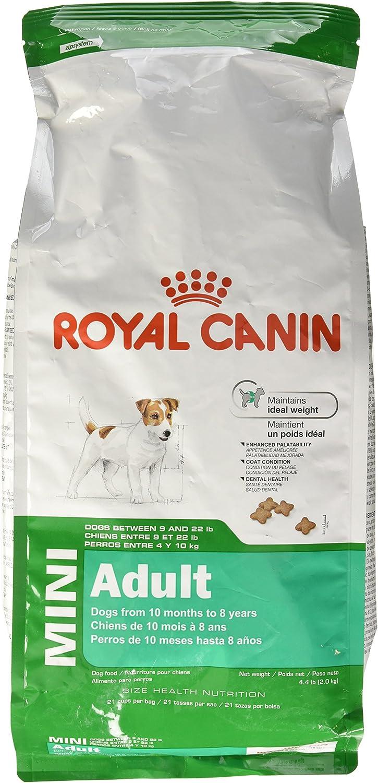 royal canin comida para perros mini adultos