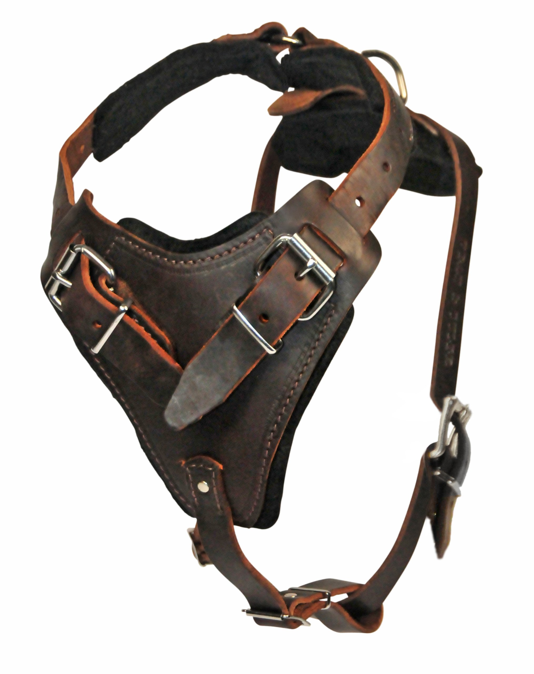 Dean and Tyler The Boss Nickel Belt Style Buckles Leather Dog Harness, Brown, Large - Fits Girth Size: 31-Inch to 41-Inch