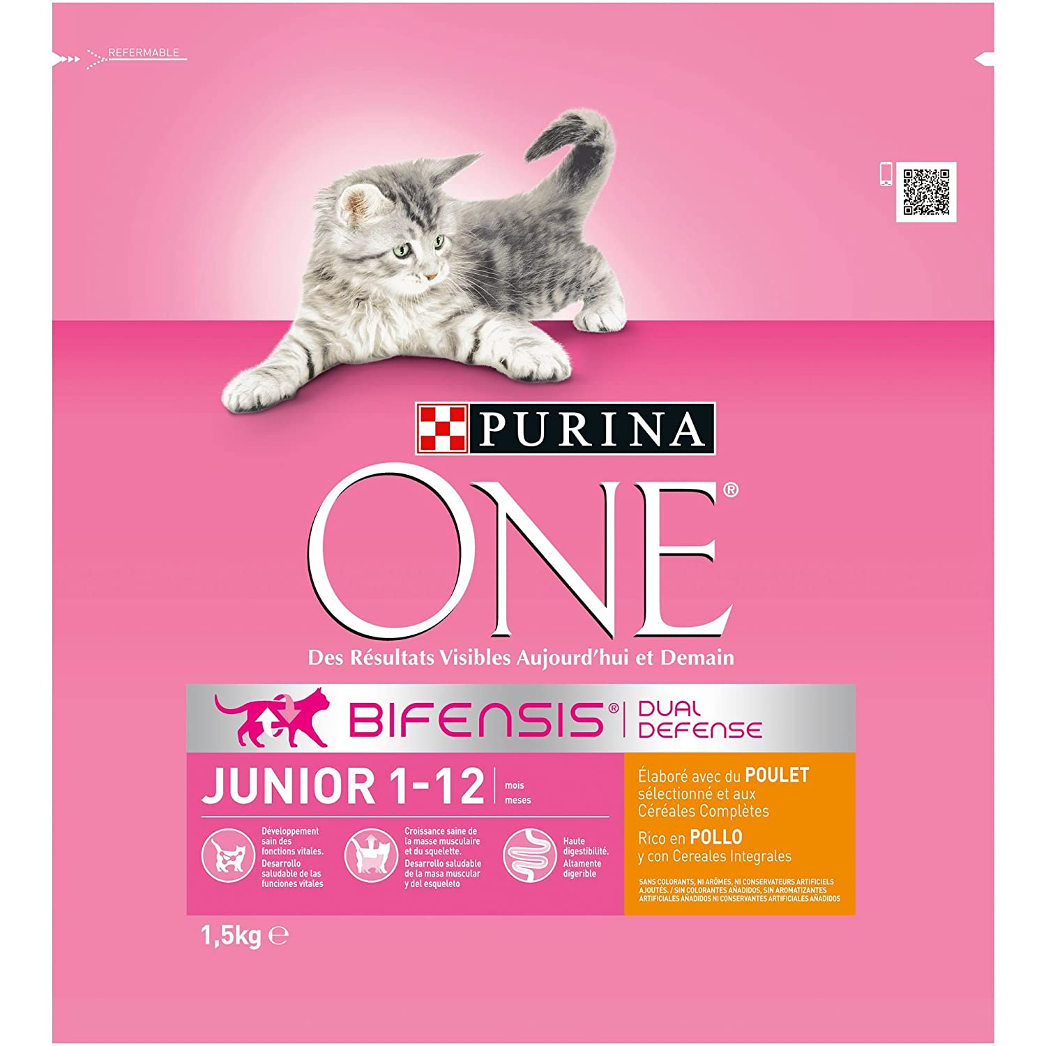 Purina ONE Bifensis Pienso para gatitos Junior Pollo y Cereales 6 x 1,5 Kg: Amazon.es: Productos para mascotas