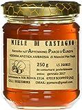 Dolci Aveja Miele di Castagno Raccolto sull'Appennino Abruzzese Parco d'Europa Prodotto Artigianale - 250 gr