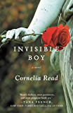 Invisible Boy (A Madeline Dare Novel)