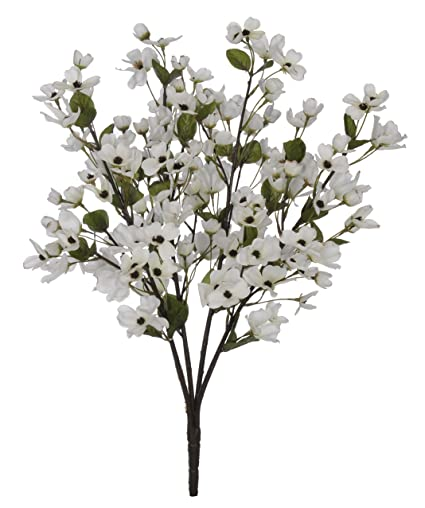 Amazon house of silk flowers artificial 24 inch cream dogwood house of silk flowers artificial 24 inch cream dogwood bush set of 6 mightylinksfo