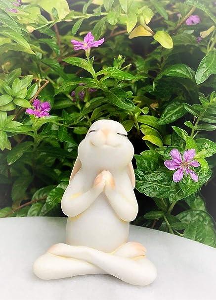 Amazon.com: Figura en miniatura para yoga, conejo, conejo ...