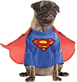 Rubies Costume DC Heroes and Villains Collection Pet Costume