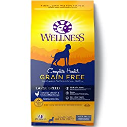 Wellness Complete Health Dry Dog Food for Large Breed