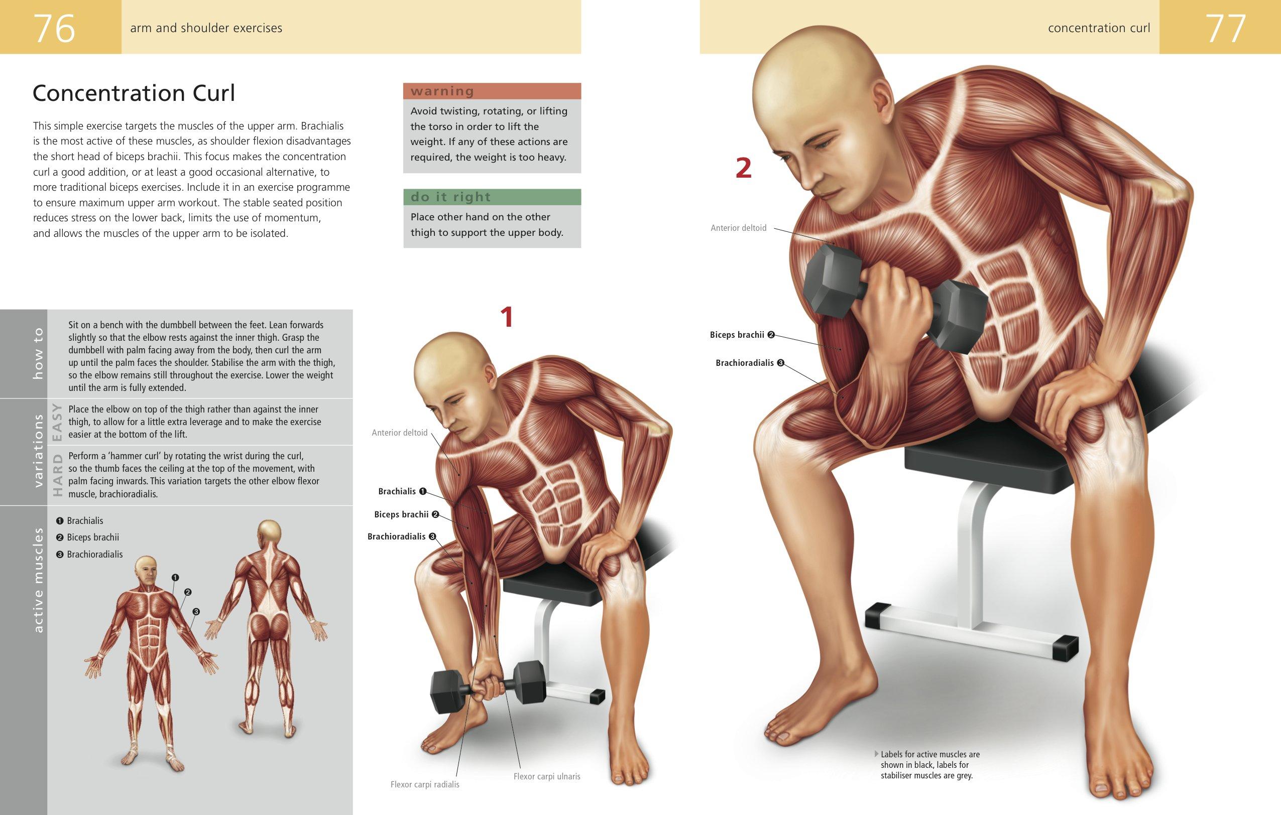 Fine Anatomy Of Stretching Craig Ramsay Elaboration - Anatomy Ideas ...