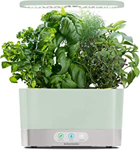 AeroGarden Sage Harvest Indoor Garden, 2019 Model
