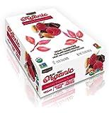 Raw Rev Organic Vegan, Gluten-Free Fruit, Nut, Seed Bars - Chocolate Raspberry Truffle 1.8 ounce (Pack of 12)
