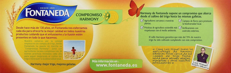Fontaneda Digestive Galleta con Copos de Avena - 300 g: Amazon.es: Amazon Pantry