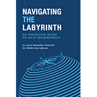 Navigating the Labyrinth: An Executive Guide to Data Management (English Edition)