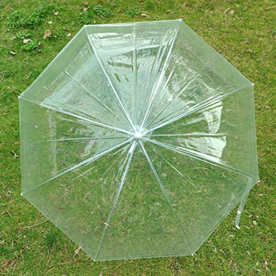 Remedios Claro umbrella con cupula PVC Paragua transparente: Amazon.es: Hogar