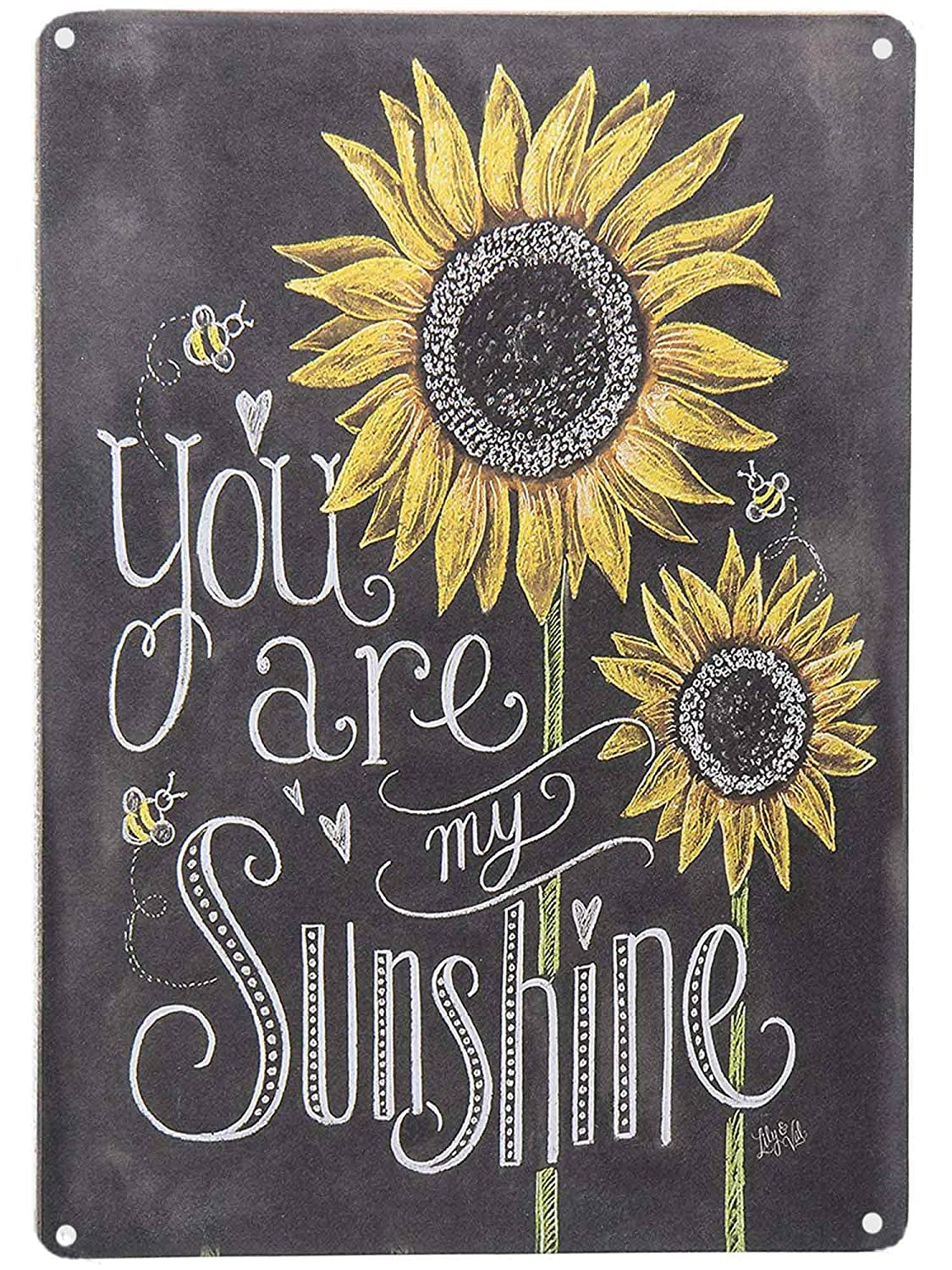 Amazon.com: SIGNT Colorful Sunflowers You are My Sunshine ...