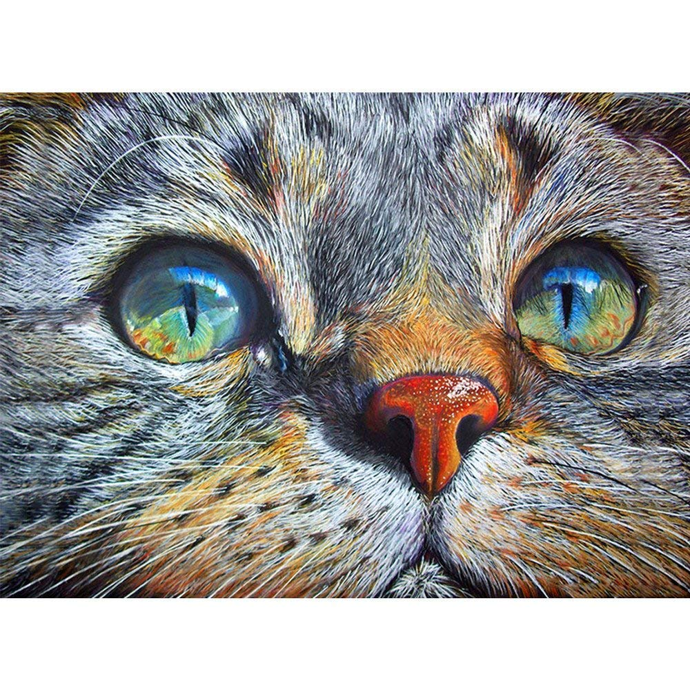 5D DIY Diamond Painting Full Drill Home Rhinestone Embroidery for Wall Decoration Cross Stitch Kit (Cat, 30x40cm) feilin
