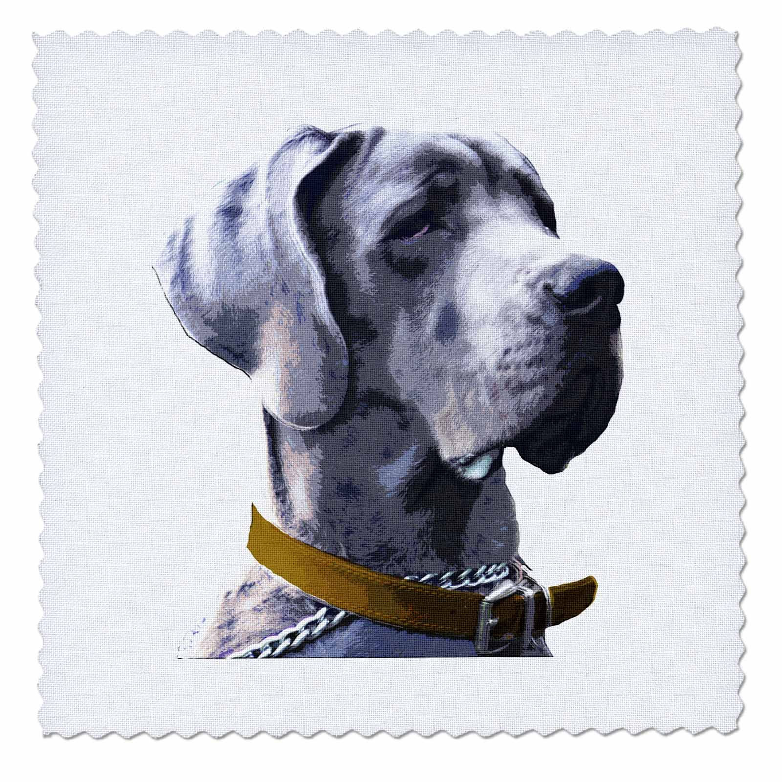 3dRose Sven Herkenrath Animal - A Funny Great Dane Dog With a Serious Look on White Background - 22x22 inch quilt square (qs_280399_9)