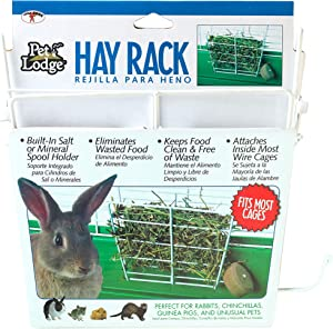 LITTLE GIANT Wire Hay Rack - Pet Lodge - Hay & Grass Feeder/Manger for Rabbit, Hamster, Guinea Pig, Chinchilla, Ferret, Other Small Animals (Item No. 153171)