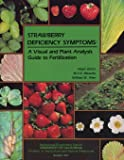 Strawberry Deficiency Symptoms: A Visual and Plant Analysis Guide to Fertilization