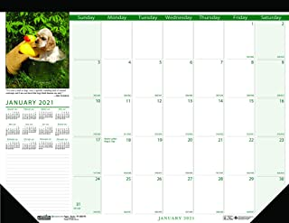 product image for House of Doolittle 2021 Monthly Desk Pad Calendar, Earthscapes Puppies, 18.5 x 13 Inches, January - December (HOD1996-21)