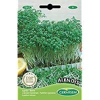 Germisem Alenois Semillas de Berro Jardín 12 g (EC7013)