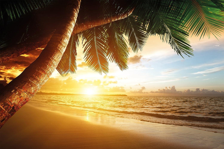 Sandy Beach at Sunset wall decoration – Paradise/ Palm Trees/ Ocean Mural-Beach Motiv – XXL wallpaper by GREAT ART (55 Inch x 39.4 Inch)