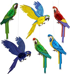 Hanging Parrot Paper Honeycomb Decorations for Tropical Birthday Party (6 Pack)
