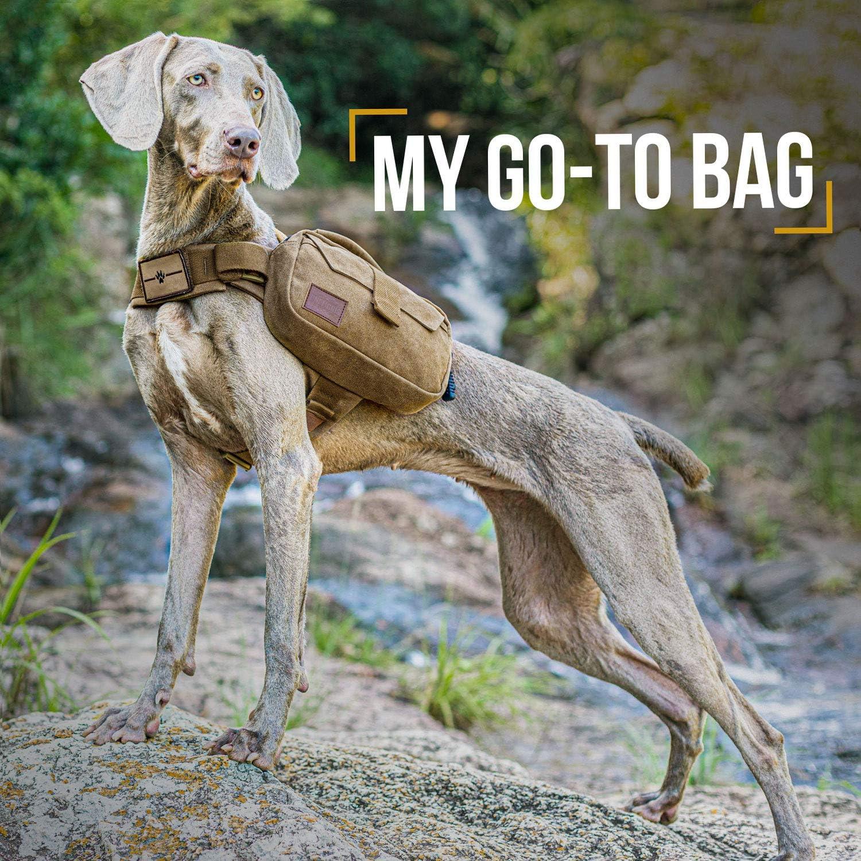 senderismo para perros de tama/ño M//L OneTigris Mochila para perros M, marr/ón camping embalaje m/últiple