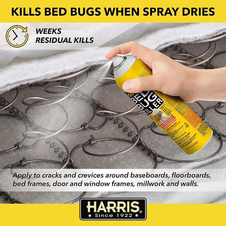 Amazon Com Harris Bed Bug And Egg Killer 16oz Aerosol Spray Insect Repellents Garden Outdoor