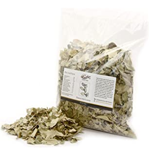 Amazon com : Dried Sidr Leaves 250g Sourced from Madinah, Saudi