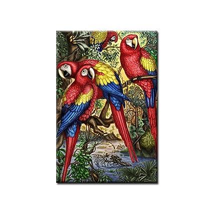 Amazon.com: chengjing-High Definition Bird Canvas Prints Beautiful ...