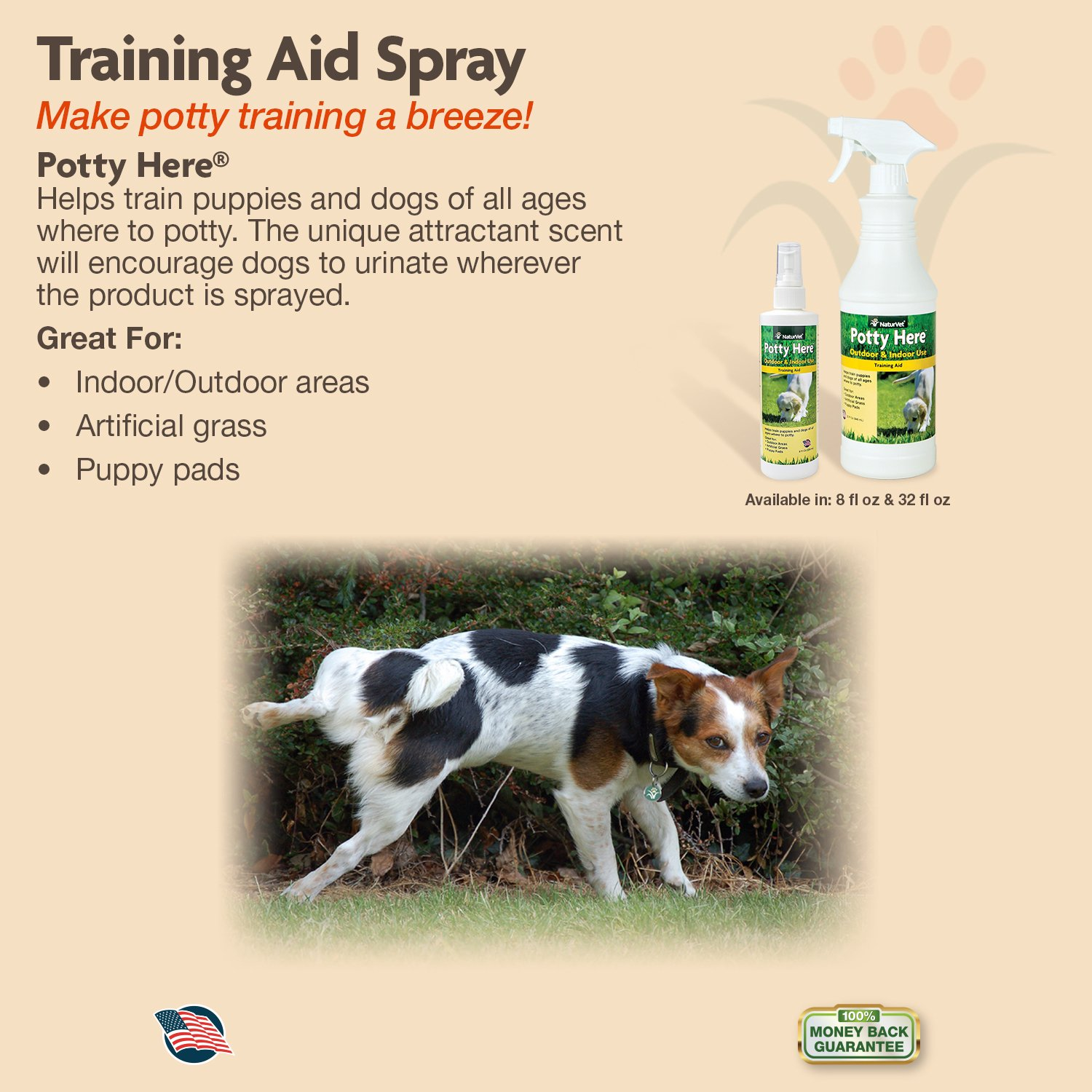Amazon.com : NaturVet Potty Here Training Aid Spray for Puppies and ... | How Do You Potty Train A Dog