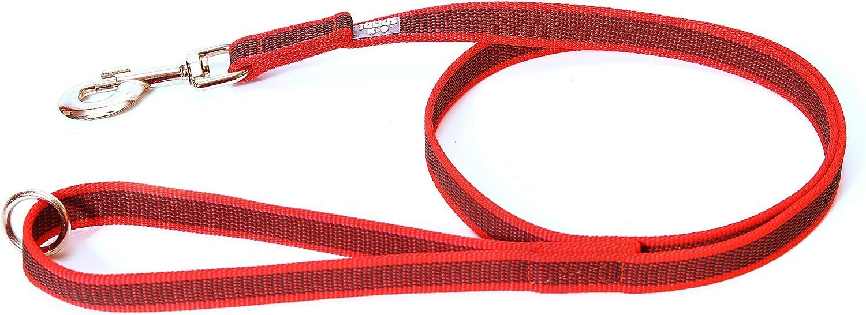 Julius-K9 Correa, Rojo y Gris, 20 mm x 1,2 m: Amazon.es: Productos ...