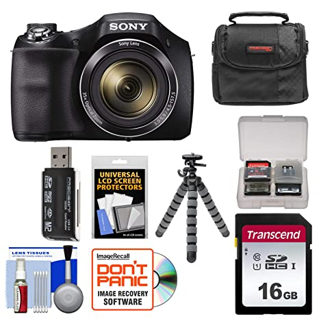 Amazon.com: Sony Cyber-SHOT DSC-H300 Cámara digital con ...