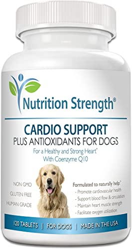 Nutrition Strength Cardio Support for Dogs Plus Antioxidant, L-Carnitine, L-Taurine, with Coenzyme Q10 and Vitamin E, Promotes a Healthy and Strong Dog Heart, 120 Chewable Tablets