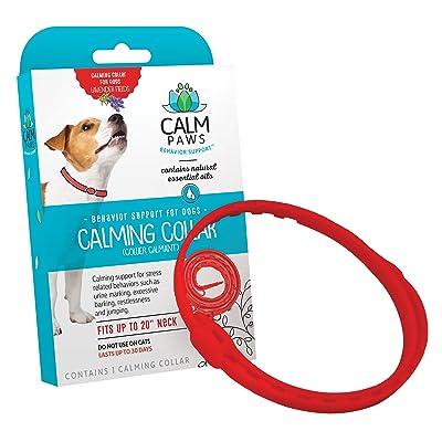 Calm Paws Calming Collar