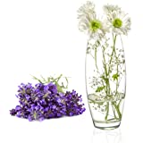 Clear Glass Flower Vase, Decorative Centerpiece for Home, Office, Event, Wedding (Style 5)