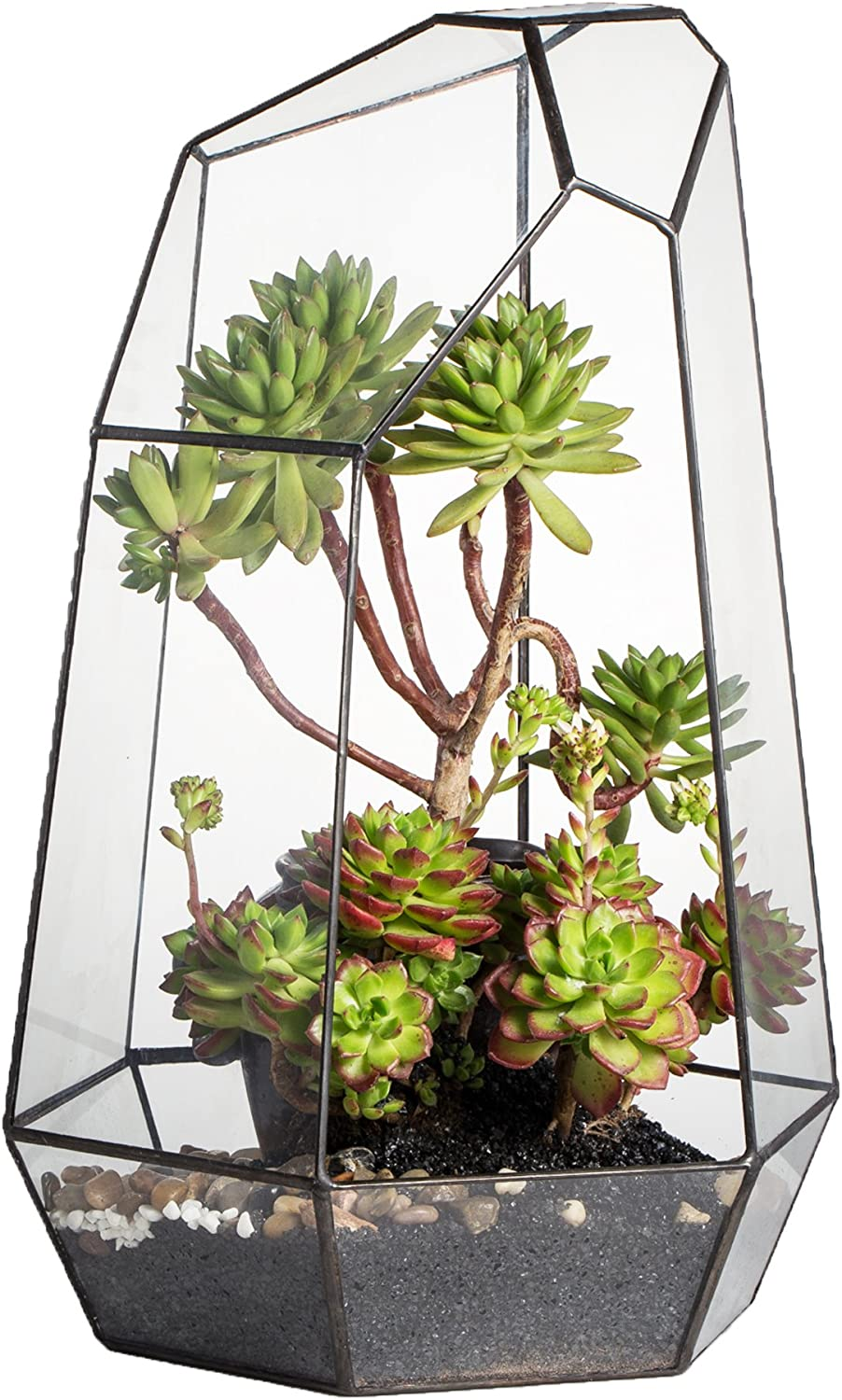 NCYP 16 inches Height Super Large Handmade Irregular Prism Glass Geometric Terrarium Indoor Outdoot Display Box Tabletop Succulent Plant Planter Garden Fern Moss Flower Pot Bonsai Tall Centerpiece